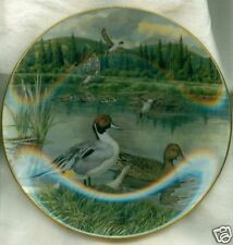 Knowles Plate Living Nature: Jerner's Ducks The Pintail