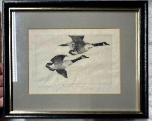 Frank W. Benson Flying Brants Proof