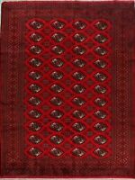 All-Over Hand-Knotted Bokhara Geometric Area Rug RED Wool Oriental Carpet 7'x10'