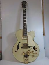 Ibanez Hollowbody Electric Guitar with Case