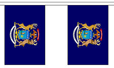 MICHIGAN U.S. STATE BUNTING 9 metres 30 flags Polyester flag