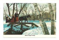 WINTER MONT ROYAL HIVER, MONTREAL, QUEBEC, CANADA CHROME POSTCARD - HORSE