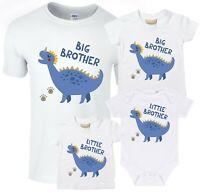 Blue Dinosaur Big & Little Brother T-Shirts & Bodysuits - Pregnancy Reveal Gift