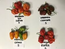 Pepper BIO Freschi mix:5 Habanero Red+5 Orange+5 Chocholarte+5 Carolina Reaper