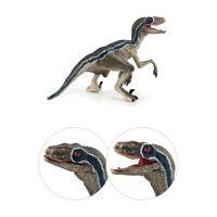 Jurassic Dinosaur Realistic Model Velociraptor Raptor Figure For Kids Dino Toy