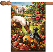 NEW Toland - Autumn Farm - Colorful Fall Barnyard Horse Dog Harvest House Flag