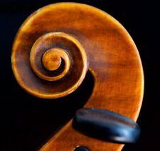"Very old labelled Vintage violin ""Giustino Segamiglia"" 小提琴 скрипка ヴァイオリン Geige"