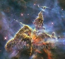 MYSTIC MOUNTAIN, Hubble Deep Space Reproduction Rolled CANVAS PRINT 28x24 in
