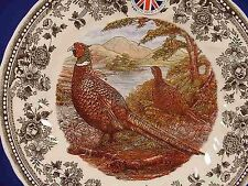 """4 Queen's QUINTESSENTIAL GAME PHEASANT THANKSGIVING 10"""" Plates ENGLAND NEW!"""