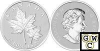 2013 'Maple Leaf' 1/2oz Specimen $10 Silver Coin .9999 Fine (13226)