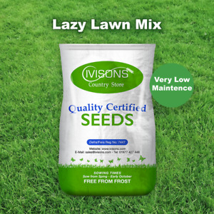 Ivisons Lazy Lawn Grass Seed Slow Growing Shade Tolerant Low Maintenance