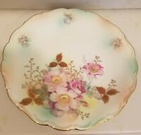 """Schumann Arzberg Germany Hand Painted Plate Wild Rose Blush Vintage Floral 12"""""""