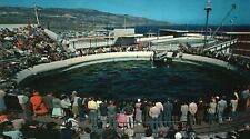 Porpoise Feeding Time At Marineland of The Pacific Vintage, Unused Postcard A49
