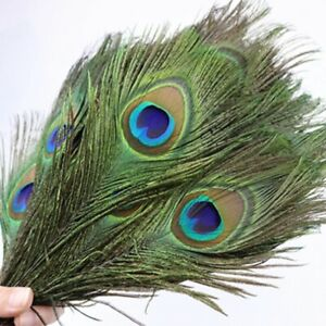 """Peacock Tail Feathers 25-30cm Feathers Craft Hat Decorations Hat Sweing 10""""-12"""""""