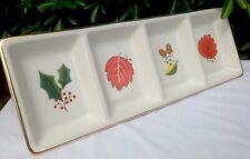 "18"" Long Snacks Dips Crudite Handpainted x4 Partition Ceramic Serving Dish"