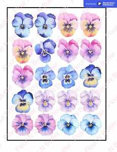 Edible Pre-Cut Wafer Flowers - Pansy 4 cm