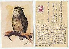 19087 - Edgar Wind: Uhu - Tierpark Neumünster -Ansichtskarte, gelaufen 12.7.1976