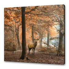 RED DEER STAG IN A FOGGY AUTUMN FOREST STUNNING CANVAS PRINT WALL ART PICTURE