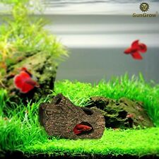 SunGrow Betta Log: Hollow Log For Fish To Hide, Play, Sleep And Breed: Natural