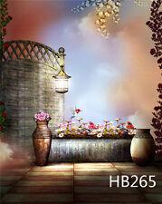 Retro Scenic Vinyl Photography Backdrop Background Photo Studio Prop 3X5FT HB265