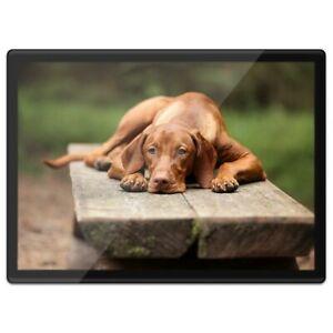Quickmat Plastic Placemat A3 - Large Brown Vizsla Dog  #16941