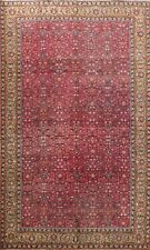 Vegetable Dye Semi Antique Floral Anatolian Turkish Hand-knotted Area Rug 6x10