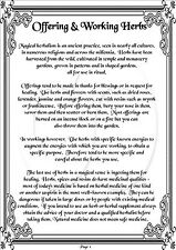 Book Of Shadows - Over 800 Printable Pages -Spells,Herbs, Crafts, Ritual & More