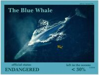 "The Blue Whale, an Endangered Species card by ""PostcardsTo SaveThePlanet"""