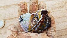 Besset hound dog.Acrylic Painting on slate. Painted stone rock fridge magnet art