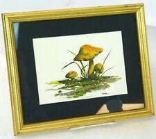 "Vintage 11"" Nancy Ricke Rhett Psychedelic Mushroom Amanita Muscaria Shroom Print"