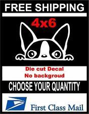 Peeking Dog Boston Terrier,Vinyl Decal Sticker Car/Laptop/ Window, White 6yr