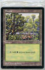 MTG Arena 1997 *Factory Sealed* Pack of 10 Oversized 6x9 Promo Basic Land Cards