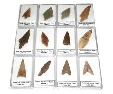 Neolithic stone age tool arrow head point in display case great gifts 3000 BC