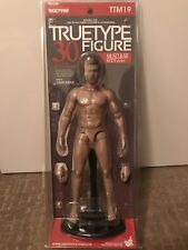 Hot Toys TTM 19 TrueType True Type Body Caucasian Muscular Figure  NEW TTM19