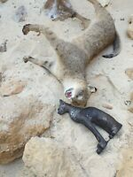 Rare Antique Ancient Egyptian Statue God Cat Protection Luck Wealth 1810 BC