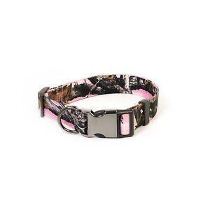 Pet Champion Adjustable No-Pull Harness, Collar, Leash Matching Bundle LG