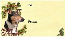 Smooth Collie Christmas Labels by Starprint - No 2