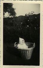 PHOTO ANCIENNE - VINTAGE SNAPSHOT - ENFANT BÉBÉ CORBEILLE PANIER DRÔLE - CHILD
