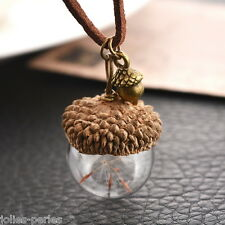 1PC Acorn Shell Dandelion Glass Pendant Necklace For Women Jewelry 42cm