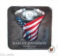 HARLEY DAVIDSON V-TWIN MOTOR  USA FLAG VEST PIN ** AMERICAN FLAG **