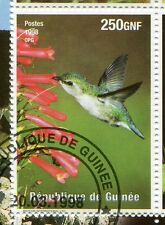 GUINEA - 1998, STAMP 1479, BIRD HUMMINGBIRD ', obliterated, BIRD, used STAMP