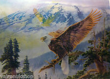 "3D LENTICULAR ART POSTER 'EAGLES' 16"" X 12"" AMAZING DETAIL"