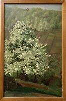 Ölbild Öffinger Landschaft mit blühendem Birnbaum Botnang bei Stuttgart 37 x 24