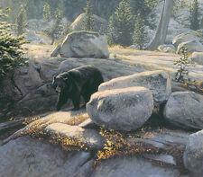Stephen Lyman BOULDER BRUIN, Black Bear, Yosemite, Giclee Canvas #150/150