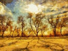 NATURE LANDSCAPE PAINTING TREE SUN SKY SHADOW POSTER ART PRINT PICTURE BB1461A