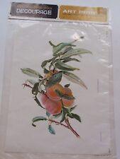 Vintage Patricia Nimocks Decoupage Art Print Peaches Transfer Framing IOP German
