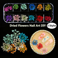 Real Dried Flower Leaves 3D UV Gel Acrylic DIY Tips Nail Art Decor Stickers