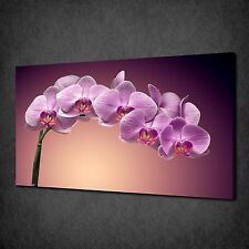 ELEGANT PURPLE ORCHID FLOWERS CANVAS PRINT PICTURE POSTER READY TO HANG