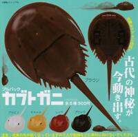 Kitan Club pullback horseshoe crab Gashapon 5 set mini figure capsule toys