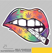 Sexy Lips Smoking Vinyl Sticker Decal Window Car Van Bike 2609